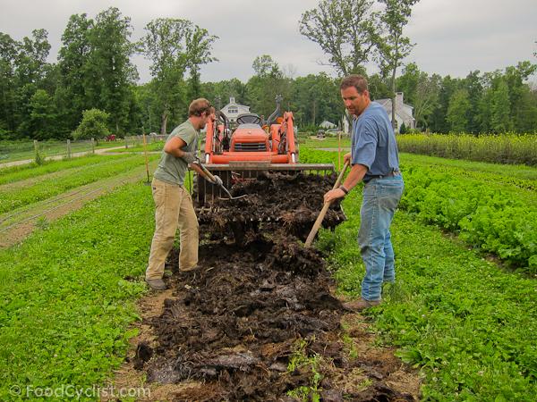 organic-farming-7-of-18.jpg
